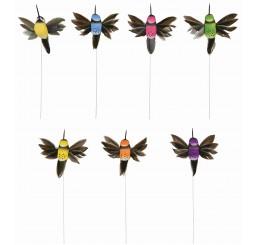 Hummingbird Pick