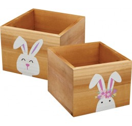 Wooden Cube w/ Rabbit Design