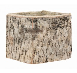 "5.25"" Square Birch Container"