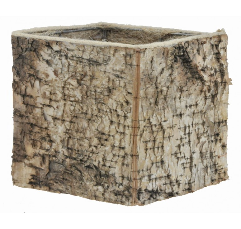 "6.25"" Square Birch Container"
