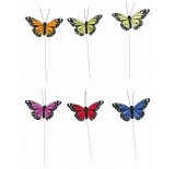 Assorted Color Butterfly Picks
