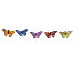 Assorted Color Butterfly Pick