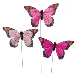 Assorted Pink Butterfly Pick