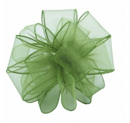 #9 Sheer, Wired-Edge Ribbon-Basil